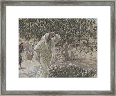 The Accursed Fig Tree Framed Print