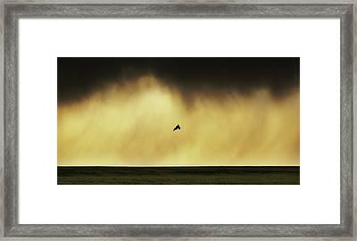 The Acrobat Framed Print
