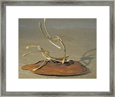 The Acrobats Framed Print by Ruth Edward Anderson