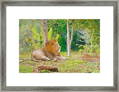 The African King Framed Print