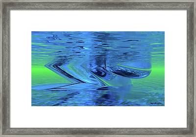 The All Seeing Eye Framed Print by Wayne Bonney