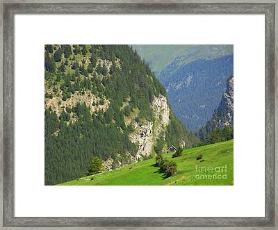 The Alps In Spring Framed Print
