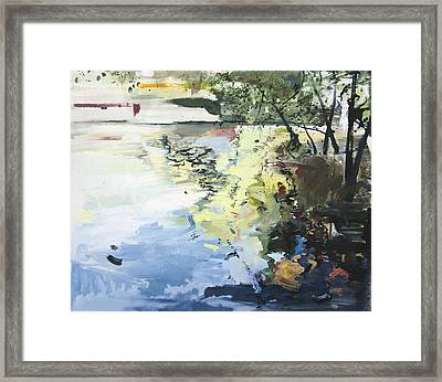 The Alster In High Summer Framed Print by Calum McClure