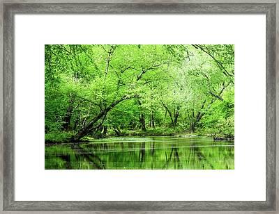 The Alum Fork River In Springtime Framed Print