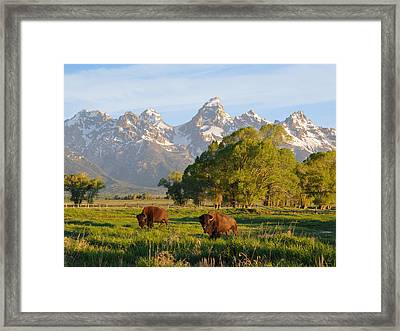 Framed Print featuring the photograph The American West by Aaron Spong