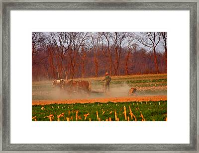 The Amish Way Framed Print by Scott Mahon