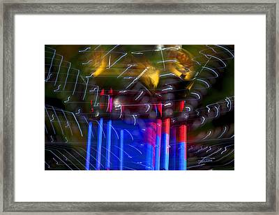 The Amusement Park Framed Print by Barbara  White