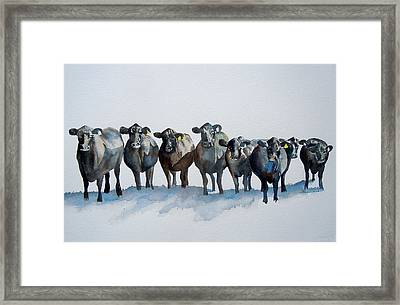 The Angus Eight Framed Print by Sharon Mick