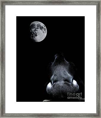 The Ape And The Moon . Photoart . R7917 Framed Print by Wingsdomain Art and Photography