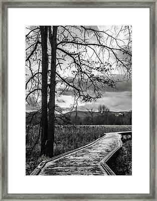 Framed Print featuring the photograph The Appalachian Trail by Eduard Moldoveanu