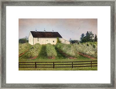 The Apple Orchard Framed Print