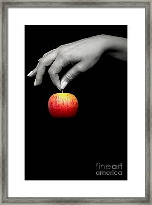 The Apple Framed Print by Svetlana Sewell