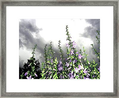 The Approaching Storm Framed Print by Will Borden
