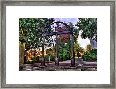 The Arch 6 University Of Georgia Arch Art Framed Print
