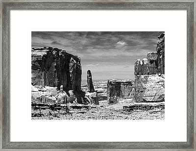 Park Avenue In Black And White Framed Print