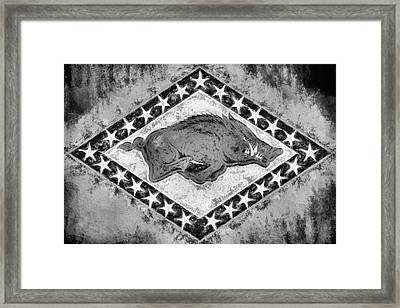 The Arkansas Razorbacks Black And White Framed Print by JC Findley