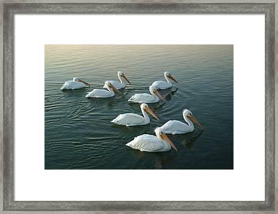 The Armada Framed Print by Robert Anschutz