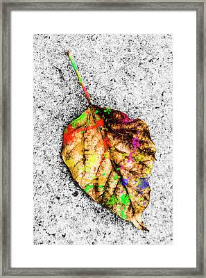 The Art Of Nature Framed Print by Jorgo Photography - Wall Art Gallery
