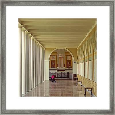 The Art Photographer Framed Print