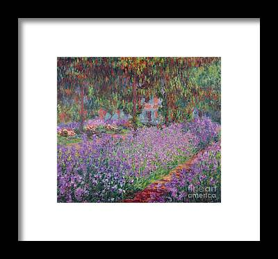 Flower Bed Framed Prints