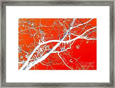 The Asian Tree Framed Print