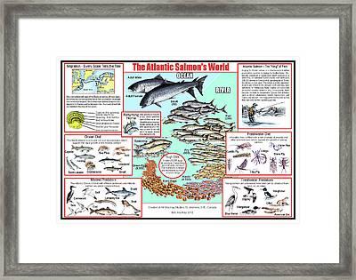 The Atlantic Salmon's World Framed Print