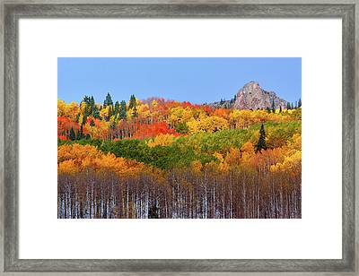 The Autumn Blanket Framed Print by John De Bord