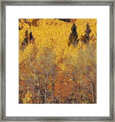 The Autumn Bounty Framed Print by Dan Sproul