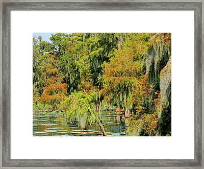 The Autumn Cometh Framed Print