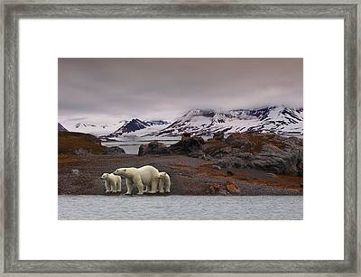 The Autumn Of The North Framed Print by Mathilde Collot