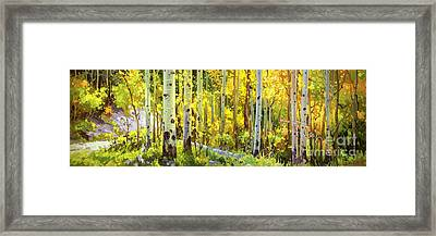 The Autumn Road..... Framed Print
