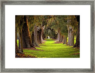 Framed Print featuring the photograph The Avenue Of Oaks 4 St Simons Island Ga Art by Reid Callaway