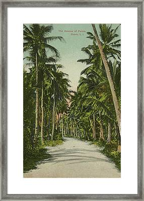 Framed Print featuring the photograph The Avenue Of Palms Guam Li by eGuam Photo