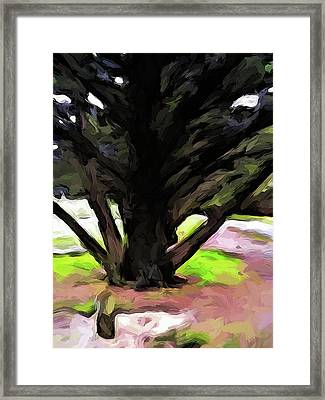 The Avenue Of Trees 1 Framed Print