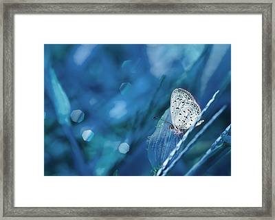 The Baby Dancing Framed Print