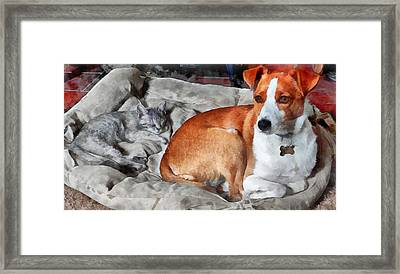 The Babysitter Framed Print by Dorothy Berry-Lound
