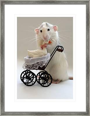 The Babysitter Framed Print