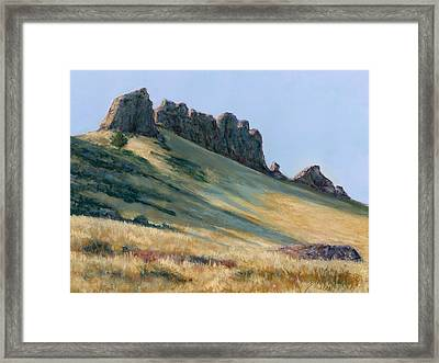 The Backbone Framed Print by Billie Colson