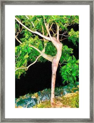 The Ballerina Tree - Da Framed Print
