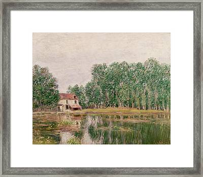 The Banks Of The Canal At Moret Sur Loing Framed Print by Alfred Sisley