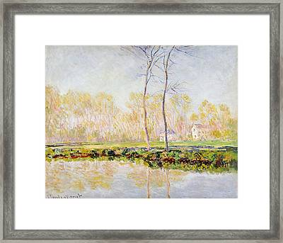 The Banks Of The River Epte At Giverny Framed Print by Claude Monet