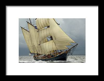 Tall Ships Race 2012 Framed Prints