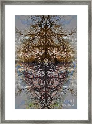 The Barking Yin Yang Framed Print by Clayton Bruster