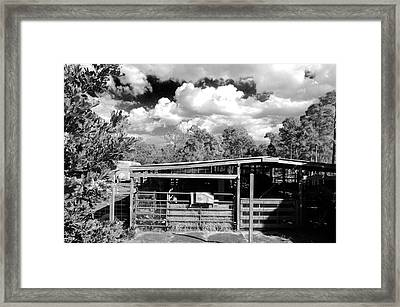 The Barn Framed Print by Don Youngclaus