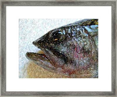 The Bass Framed Print