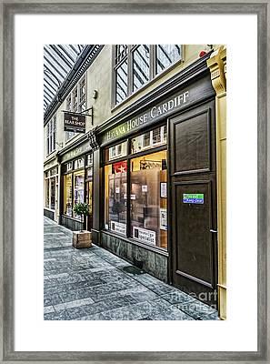 The Bear Shop Framed Print