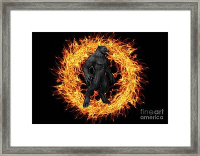 The Beast Emerges From The Ring Of Fire Framed Print