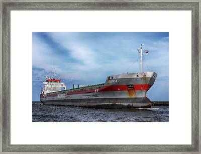 Framed Print featuring the photograph The Beatrix by Susan Rissi Tregoning