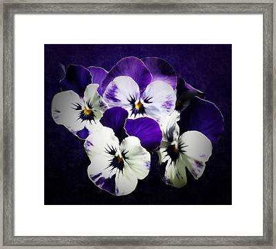 The Beauties Of Spring Framed Print