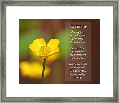 The Beautiful Buttercup Poem Framed Print by Tracie Kaska